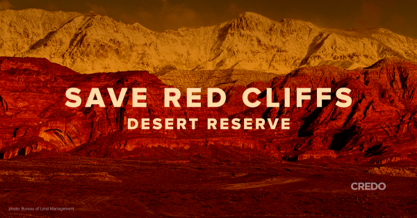 save-red-cliffs-1200