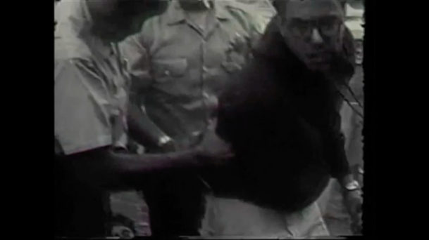 Screenshot from Video